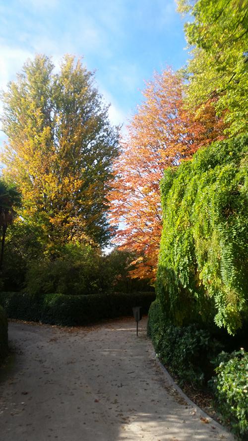 JardínBotanico3