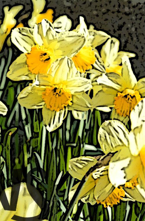 Flores_Portada